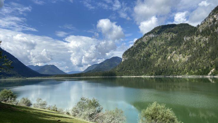 Achtsamkeitswanderung - Wandern mit Waldbaden kombinieren